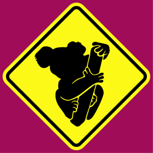 Gift or t-shirt stylized Koala drawn from the front and pasted on a road sign customized online.