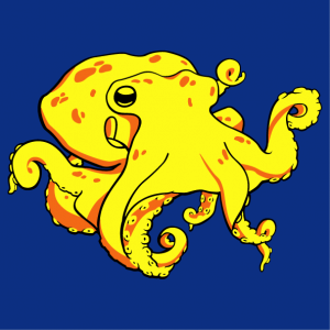 Octopus t-shirt to personalize online. Stylized octopus drawn in 3 colors.
