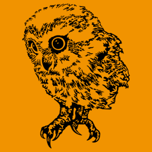 Customizable owl, high resolution black and transparent design.