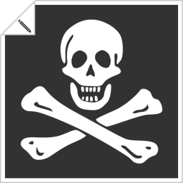 Pirate and piracy designs to customize online, skull, skull and crossbones, jolly roger etc.