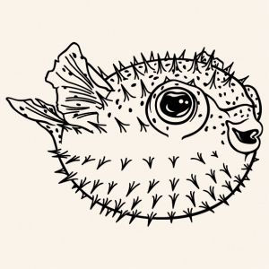 Funny pufferfish fish to print online. Ocean and marine fish design. Plump pufer fish.