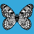 Elegant black and white opaque butterfly to be printed online.