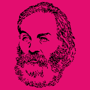 Portrait of Walt Whitman, an illustration Writer and poetry.